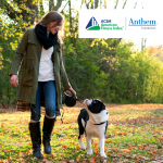 woman walking black and white dog in fall leaves